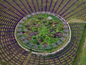 Lavender Labyrinth Michigan | michigan s lavender labyrinth is a one of a kind gem