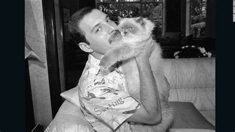 mercury an intimate biography of freddie mercury epub the private world of freddie mercury cnn