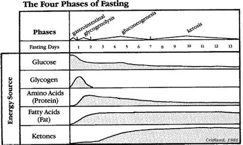 Water Fasting Detox Process by All About Loss Precision Nutrition