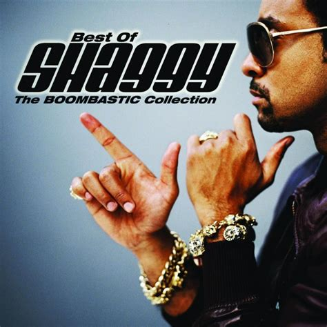 bangin on the bathroom door shaggy feat rik rok it wasn t me lyrics musixmatch