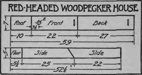 woodpecker bird house plans woodpecker bird house plan
