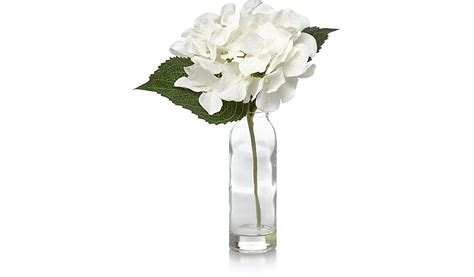 Asda Flower Vases by Asda Flowers And Plants The Best Flower In 2017