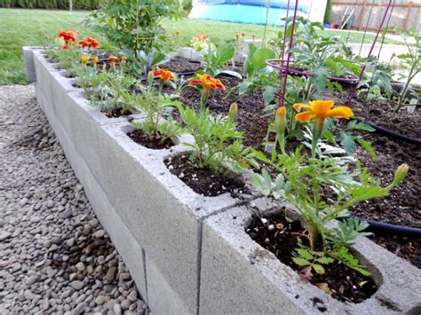 how to prepare a garden bed how to make a garden bed pictures photos and images for