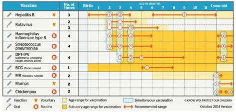 printable immunization schedule ontario vaccination a choice between two unknowns the japan times