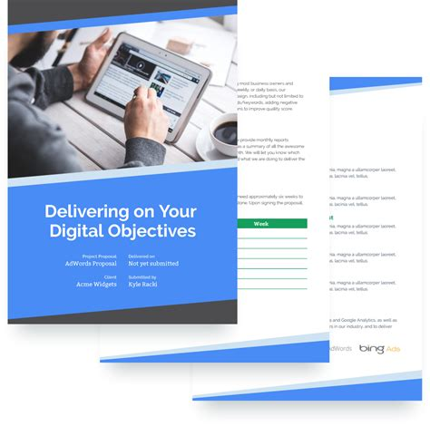 ppc strategy template adwords ppc template free sle