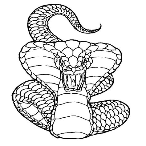 coloring pages of dangerous animals deadly coloring download deadly coloring