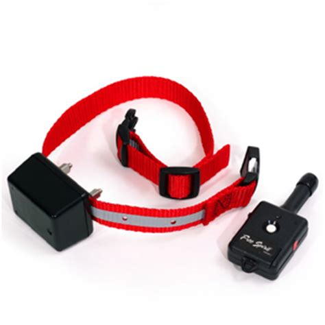 puppy shock collar collars and order 4 k9s