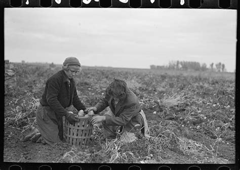 haircut east grand forks 699 best farm security administration images on pinterest