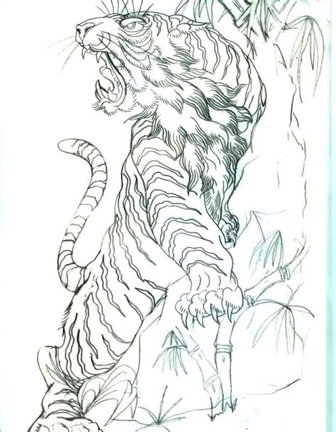 tattoo japanese sketch 29 best 3d tiger tattoo with bamboo images on pinterest