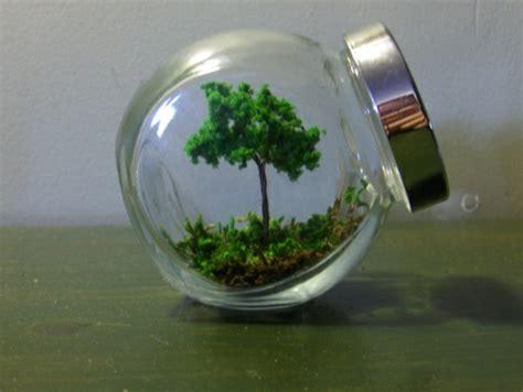 Mini Terrarium Selber Bauen by Terrarium Selbst Bauen Oder Wie Erstellt Eine Mini