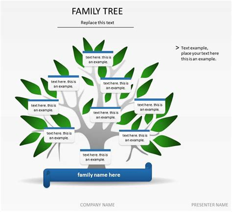 family tree word template 5 family tree word templates excel xlts