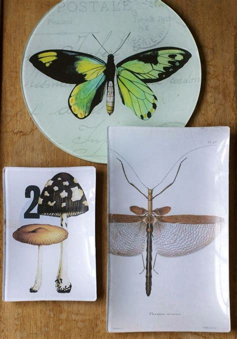 tutorial x decoupage decoupage plates tutorial don t use mod podge on glass