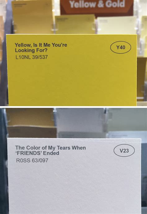 obvious plant adds clever names to ordinary paint colors at a local store