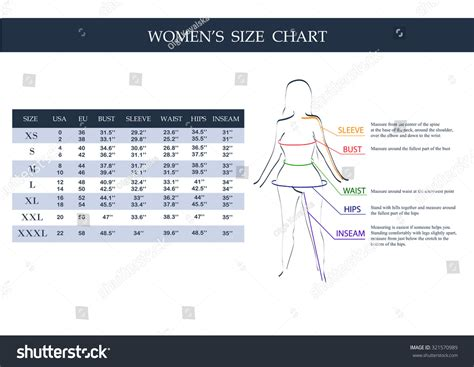 measurements template size chart measurements clothing stock vector