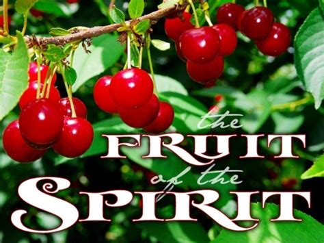 fruits of the holy spirit the fruits of the holy spirit downriver disciples