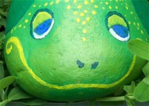 Pet Rock Frog pet rock frogs