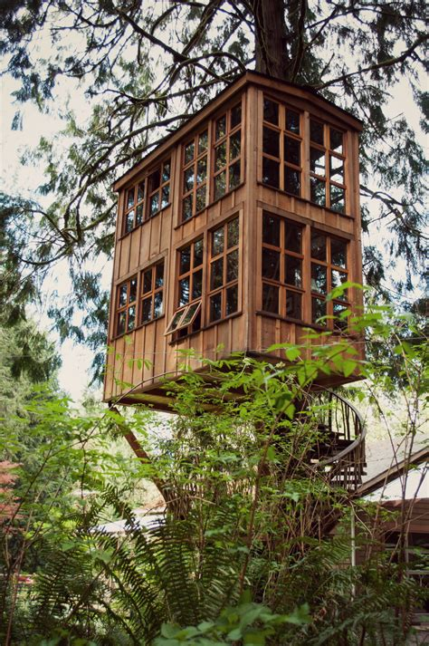 house design tips tree house design ideas for modern family inspirationseek com