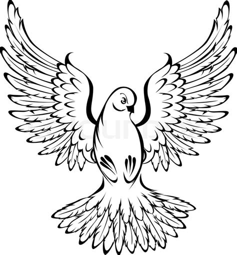 fliegende taube stock vektor colourbox