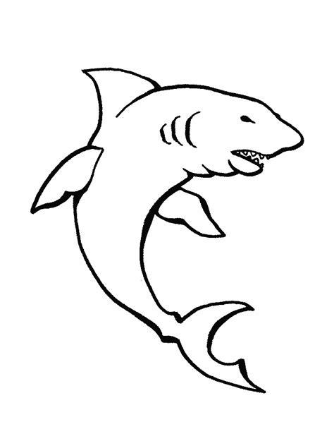 imagenes animales marinos para colorear colorear animales marinos tibur 243 n dibujos para