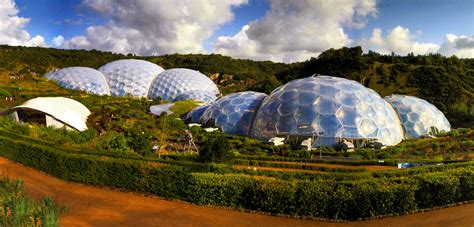 buy  eden project cornwall