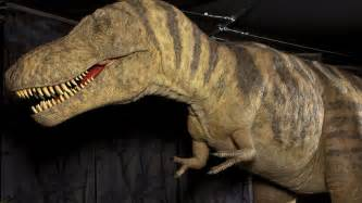 news in pictures dinosaurs invade ulster museum