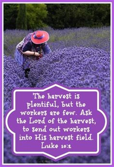 the harvest is plentiful but the workers are few 1000 images about scriptures in purple on pinterest