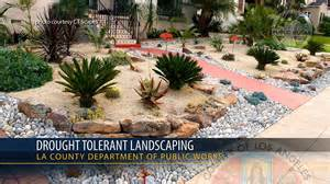 drought resistant landscaping california s drought tolerant landscaping may make heat
