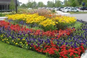 gallery for gt annual flower beds