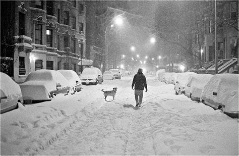 the blizzard of 1996 blizzard pooch 1996 copy black and white street