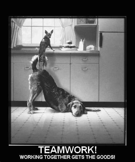 Teamwork Makes The Dreamwork Meme - lights go on part xxix teamwork huffpost