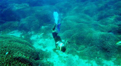 Benang Rajut Katun Bali Coral 62 bali carving products bali island