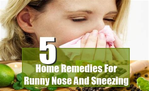 sneezing and runny nose 5 runny nose and sneezing home remedies treatments and cure herbal supplements