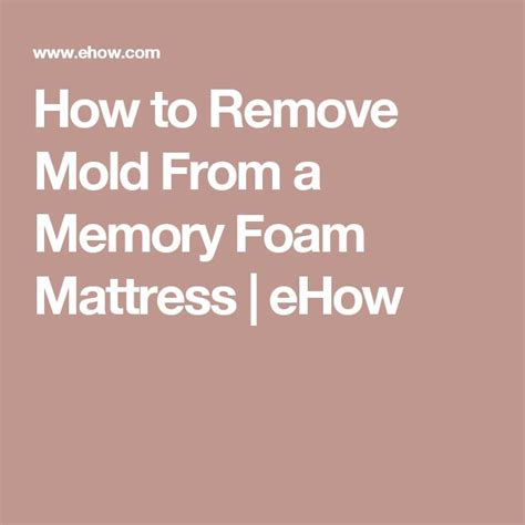 How To Remove Mold From Mattress 1000 ideas about remove mold on cleaning mold