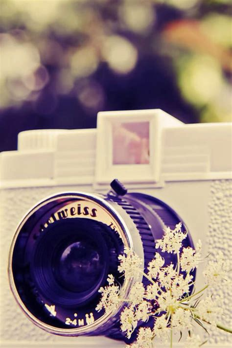 cute camera wallpaper hd 25 best ideas about wallpaper for phone on pinterest