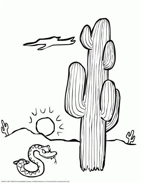 desert plants coloring pages coloring pages 2 pinterest