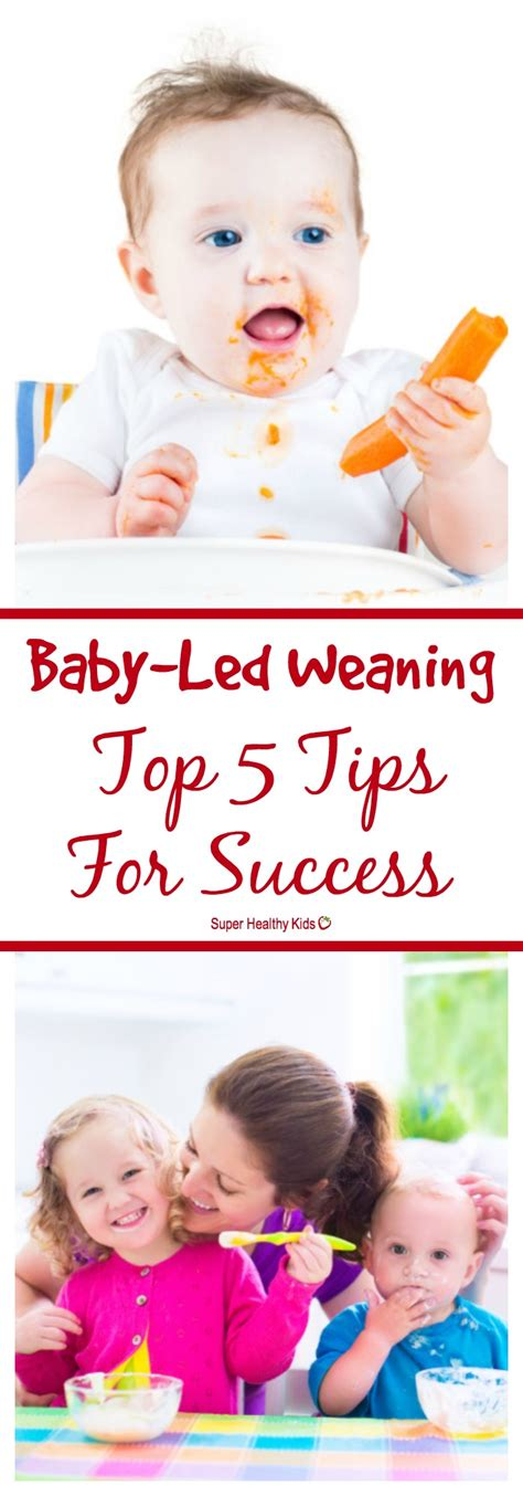 baby led weaning cutemomblog com baby led weaning top 5 tips for success healthy ideas for kids