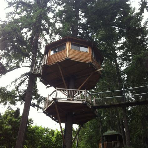 33 best images about tree houses on pinterest disney villas and resorts 33 best images about tree house cing oregon on