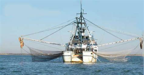un barco pesquero recolecta 800 inicia temporada de pesca de camar 243 n en el golfo de m 233 xico