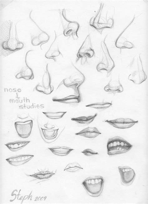 illustrator nose tutorial best 25 nose drawing ideas that you will like on