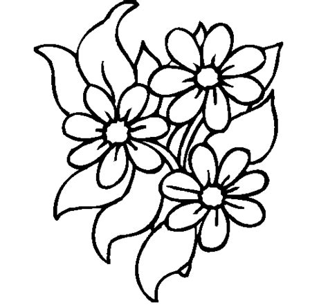 gumamela flower coloring page perfect flowers to color best and awesome colo 1585