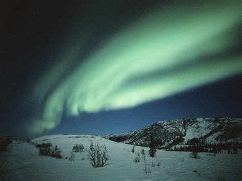 When Are The Northern Lights In Alaska by Northern Lights Gemella Travel