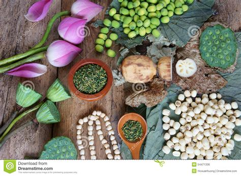 flower foods stock flower foods stock 100 flower foods stock what rate of