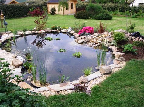 Backyard Bassin bassin bassins de jardins fish ponds
