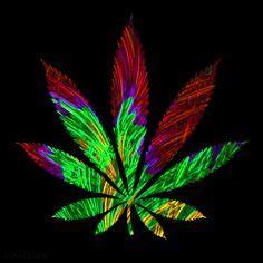 grifo weed imagenes de marihuanas para descargar goku pinterest