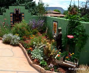 Gardening In Arizona Small Space Garden Hummingbird Paradise Ramblings From