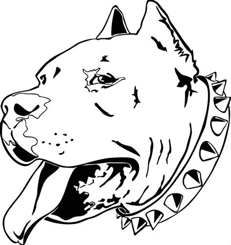 coloring pages of pitbull dogs pitbull coloring page animal ready to print pitbull