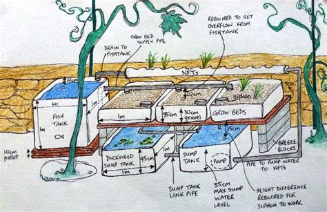 aquaponics design plans possibly the most efficient