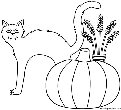 black cat with pumpkin and wheat sheaf coloring page