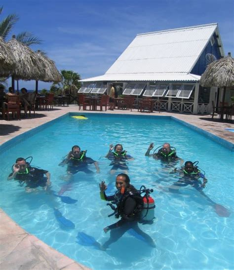 dive shop curacao diveshop scuba diving padi lions dive