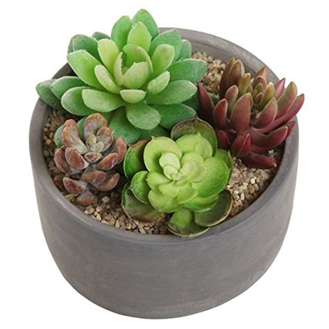 small modern round indoor gray cement flower planter pot